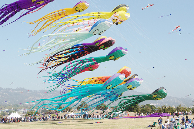 Kite Runners: Where to Fly a Kite in the Bay Area