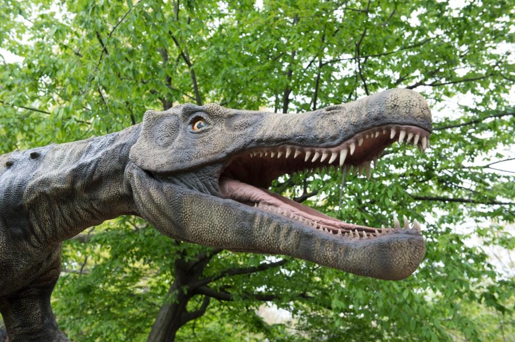 _Julie Larsen Maher 4304 Dinosaur Safari Arrival BZ 05 06 13