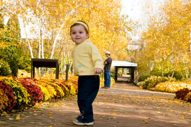 Walk This Way! Colorful Spots for Fall Family Strolls