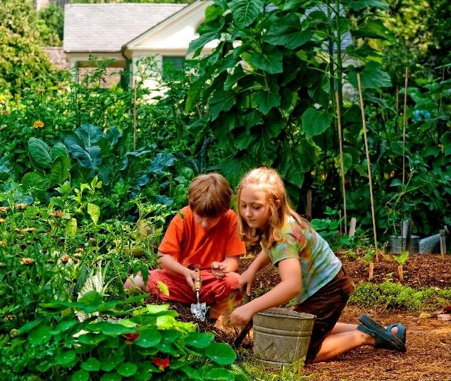 Old as Dirt: Help Celebrate the BBG Children's Garden's 100th Birthday