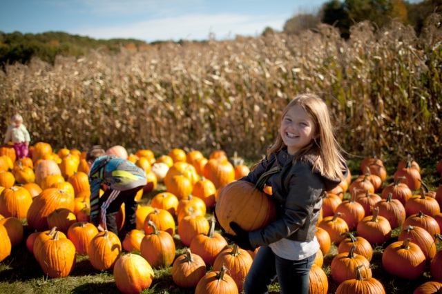 Fall Is Here! Pick Your Pumpkin at These Phoenix Farms