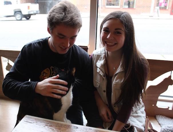 meowtropolitan-couple-cat