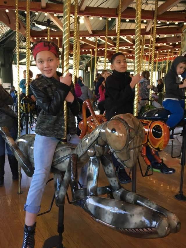 Bug Carousel Bronx Zoo