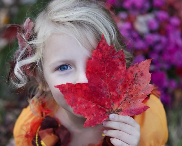 September Spoke Writing Challenge: Surviving Fall