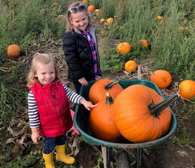 Pick the Perfect Pumpkin at These 6 Denver Pumpkin Patches