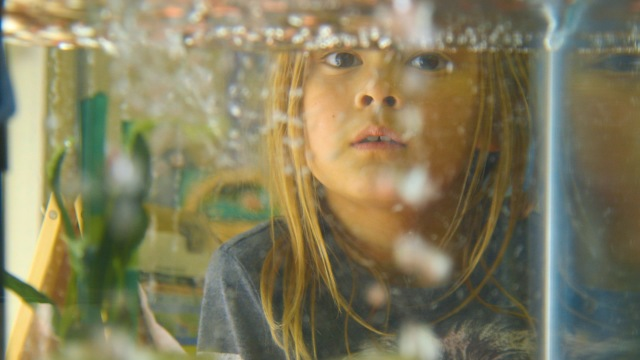 Playing Soon: The Bay Area International Children's Film Festival