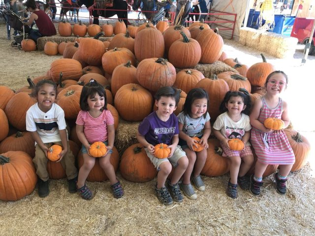 Oh My Gourd! These Pumpkin Patches Near Las Vegas Are Our Favorites