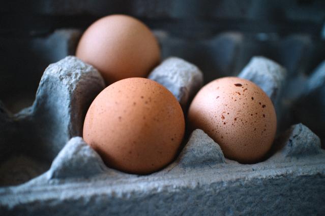 egg carton, eggs, farm, dairy, local