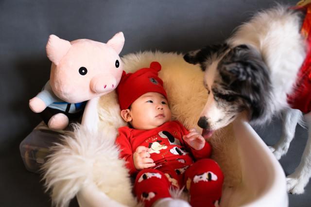Best Buddies: 5 Ways Having a Pet Benefits Your Baby