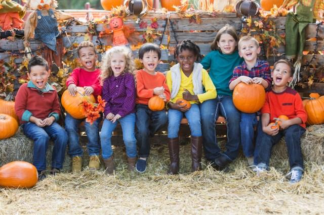 Praise the Gourd: Where to Go Pumpkin Picking near NYC